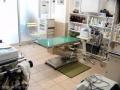 マイスター動物病院