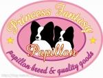 princessfantasy