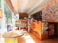 Dogsalon cherie 泉店