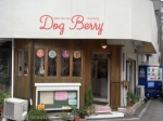 Dog*Berry
