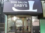 Dogslon Baby's