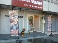 Dog Salon  WAN