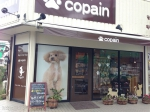 Dog&Cat Shop copain
