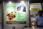 Dog Salon Terrier Style