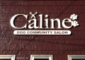 DOG COMMUNITY SALON  キャリーヌ