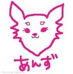 犬の美容室杏