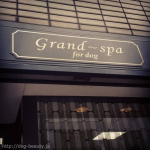 Grand~spa for dog