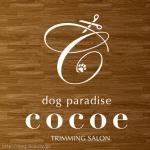 dog paradise Cocoe 淀川店