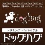 doghug豊洲本店