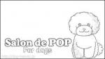 Salon de POP