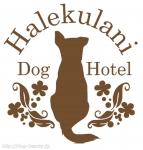 Halekulani Dog Hotel