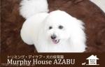 Murphy House AZABU