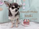 お誕生日おめでとうございます!素敵な1年になりますように。