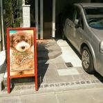 小型犬専門 トリミングサロン ペットホテル fine (ふぁいん) |  江東区亀戸,大島|江戸川区|送迎