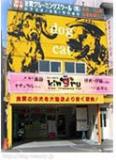 ペットオアシスキングル 堺本店