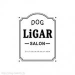 Dogsalon LiGAR