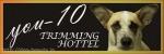 トリミングホテルyou-10