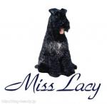 愛犬おしゃれ工房 Miss Lacy八王子店