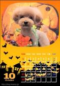 写真付きカレンダープレゼント