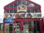 ペットショップCoo&RIKU 名古屋天白店