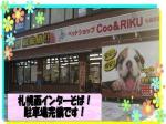 ペットショップCoo&RIKU 札幌西店