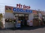 ペットショップCOO&RIKU 藤沢店