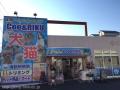 ペットショップCoo&RIKU 横浜港南台店