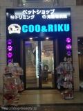 ペットショップCoo&RIKU 心斎橋店