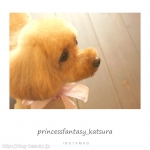 princessfantasy桂店