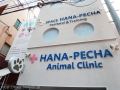 SPACE HANA-PECHA