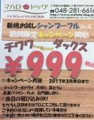 チワワ&ダックス限定 お試しシャンプーフルコース¥999