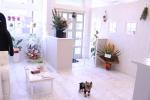 Private salon for DOG  MIRO JANE