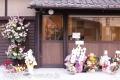dog salon 菫 〜sumire〜