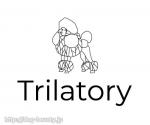 Trilatory