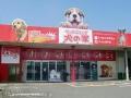ペットショップ 犬の家 本巣店