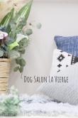 Dog Salon La Vierge