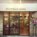 MARBLE DOG