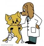 ナラシノ動物愛護病院