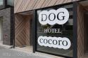 dog hotel & salon cocoro