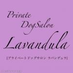 Private DogSalon Lavandula