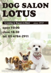 DogSalon LOTUS