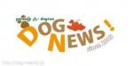 DOG NEWS!