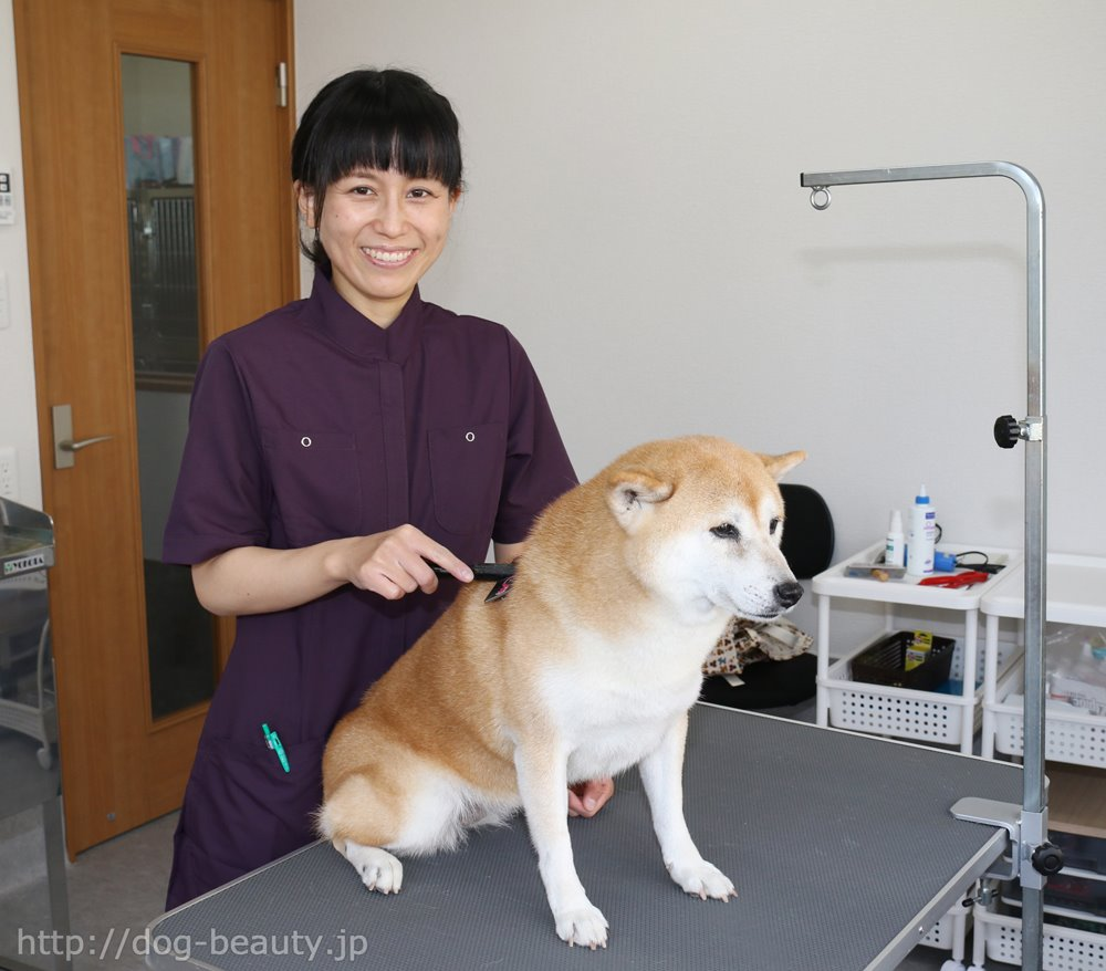 岡田 しおり