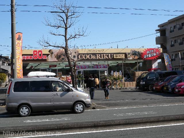 ペットショップCoo&RIKU 掛川店