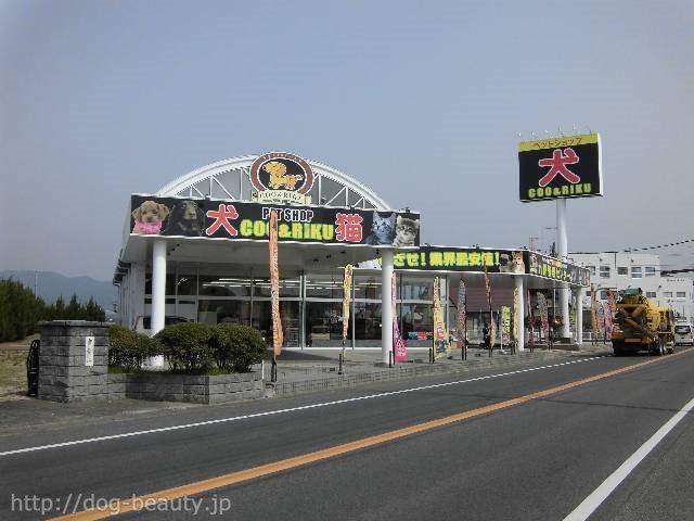 ペットショップCoo&RIKU 佐賀神埼店