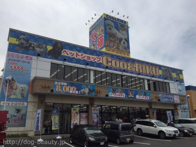 ペットショップCoo&RIKU 大分店