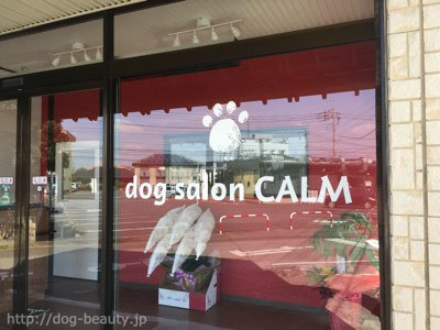 dog salon CALM