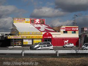 ペットショップ 犬の家 岐南店