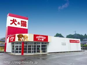 ペットショップ 犬の家 中津川店