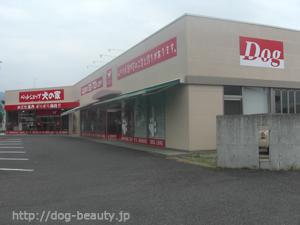 ペットショップ 犬の家 長野店